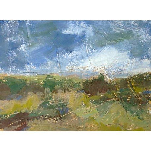 Liz Salter Sommer auf dem Moor