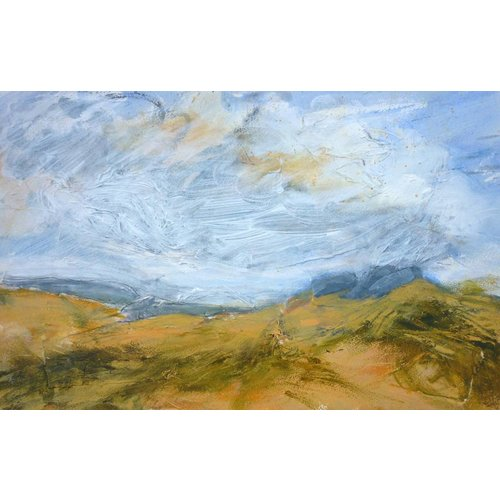 Liz Salter Old Rocks Hill Top