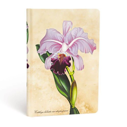 Paper Blanks Brazilian Orchid