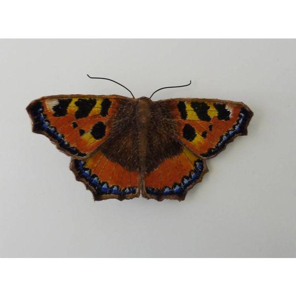 Broche bordado de la mariposa británica de la concha