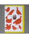 Birds and Owl Badge Card