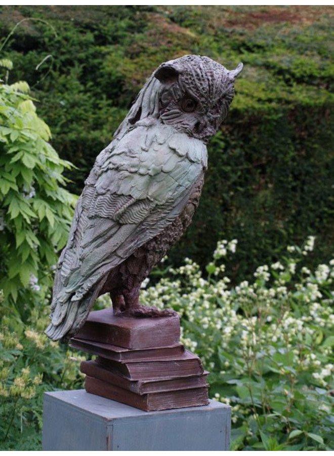 Owl of Few Words