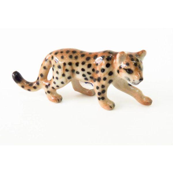 Leopard striding