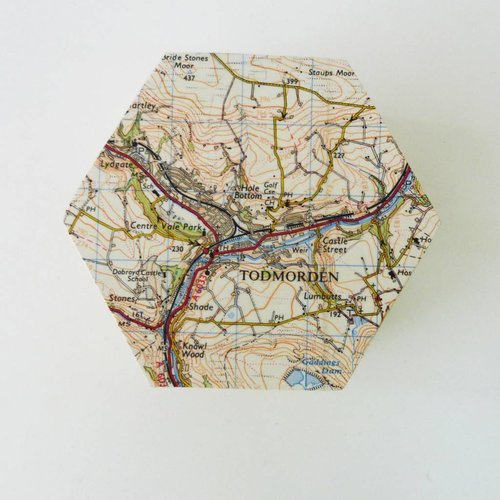Bombus Todmorden Map Hexagon hinged Birch box