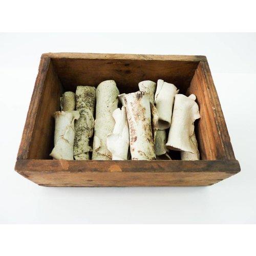 Jen Altman Schachtel mit Knochen
