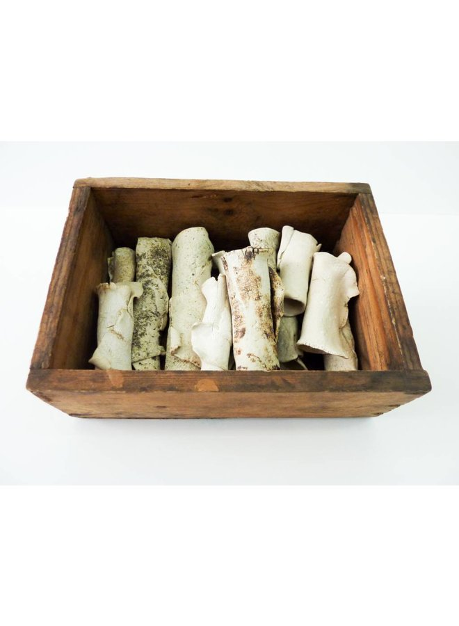 Schachtel mit Knochen