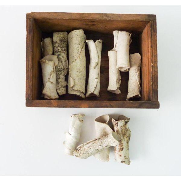 Caja de Huesos