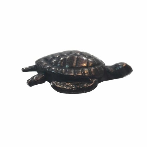 David Meredith Turtle 21