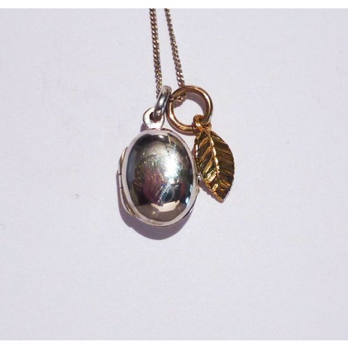 Lime Tree Design Oval locket gold charm leaf necklace