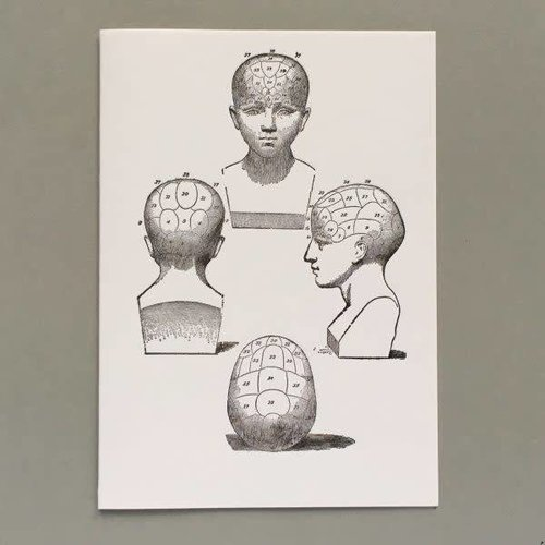 Keyhole Collection Phrenology heads  hand crafted letterpress card