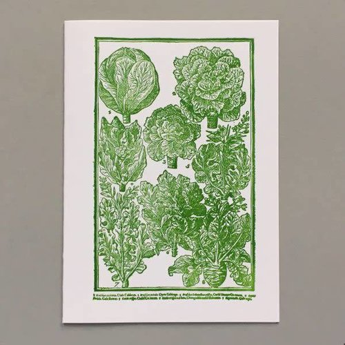 Keyhole Collection Cabbages  as lovely as roses hand crafted letterpress card