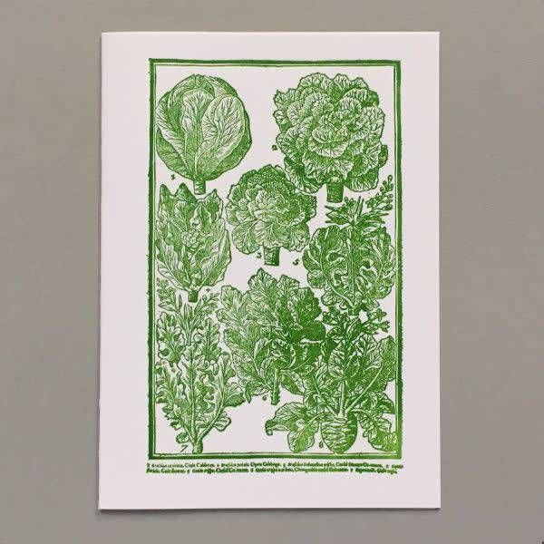Cabbages  as lovely as roses hand crafted letterpress card