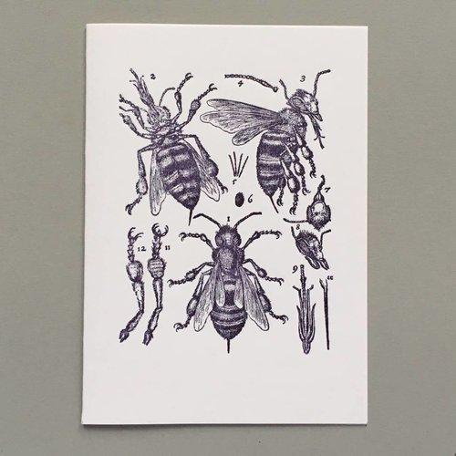 Keyhole Collection Handgefertigte Buchdruck-Karte der Bienenanatomie