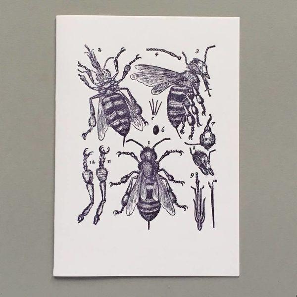 Tarjeta de tipografía hecha a mano de anatomía de abeja