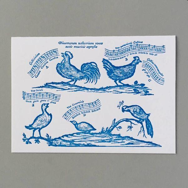 Birdsong handgefertigte Buchdruck-Karte