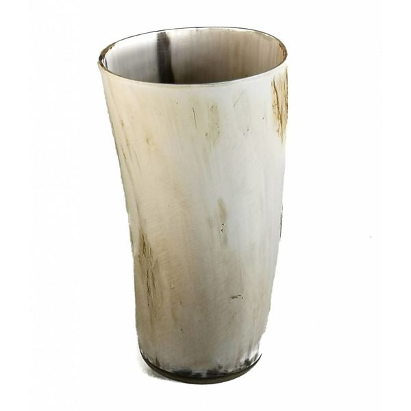 Pen cup  oxhorn vessel large 2