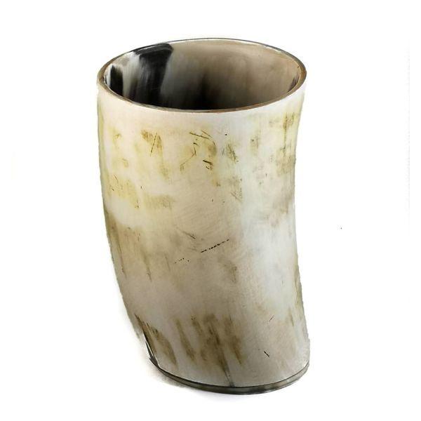 Pluma taza recipiente oxhorn grande 1
