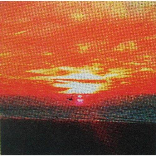 Andrea Robinson Sonnenuntergang Flug