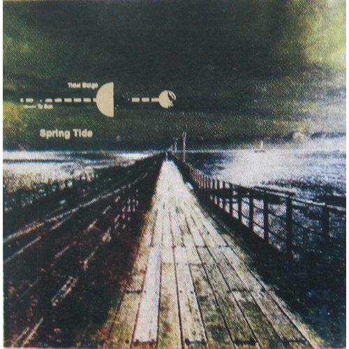 Andrea Robinson Spring Tide