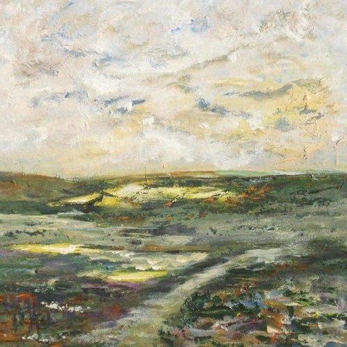 Elizabeth White Frühes Licht am Todmorden Moor