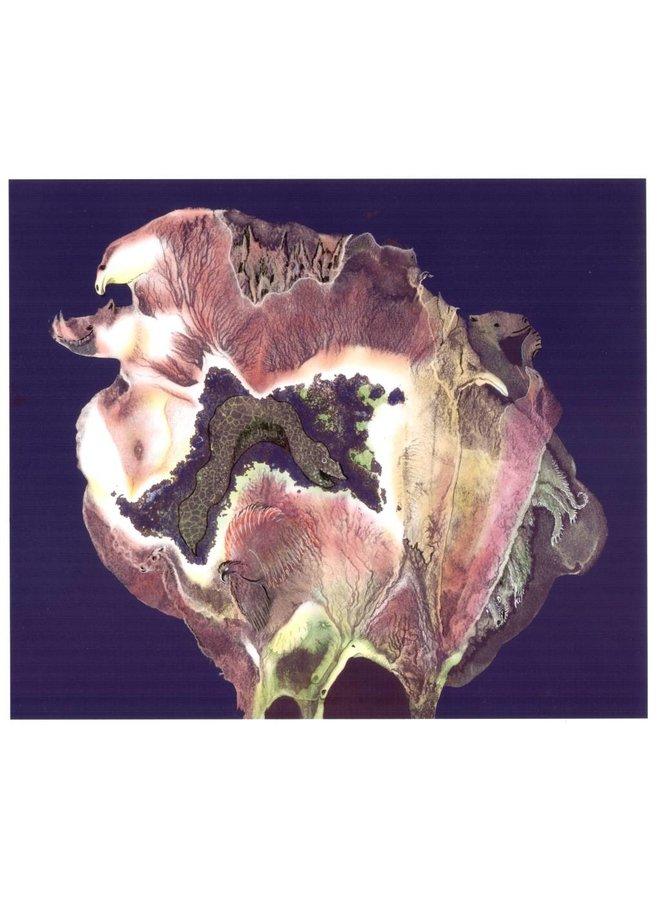 Flora Zoologie