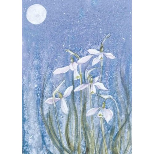 Artists Cards Moonlit Snowdrops by Sue Cullern x5 Xmas Charity cards 100x160mm