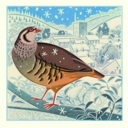 Artists Cards First Flurry by Jenny Tylden Wright x5 charity Xmas cards 14cm x 14cm