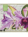 Orquídea poco jabón de karité