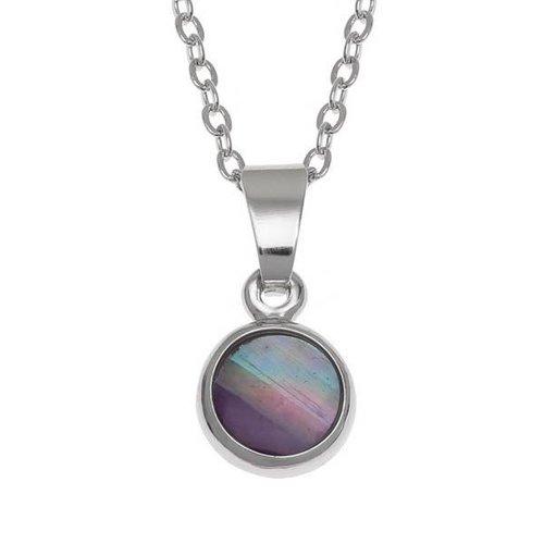 Tide Jewellery Punto pequeño collar de conchas de Paua con incrustaciones 113P