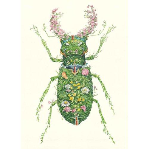 Daniel Mackie Stag Beetle card