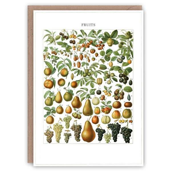 Tarjeta de libro de patrón de frutas