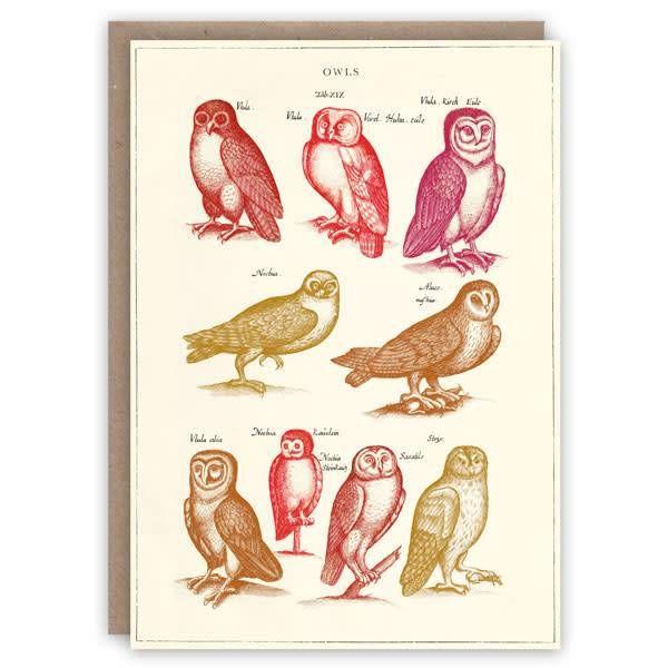 Tarjeta de libro de patrón de búhos