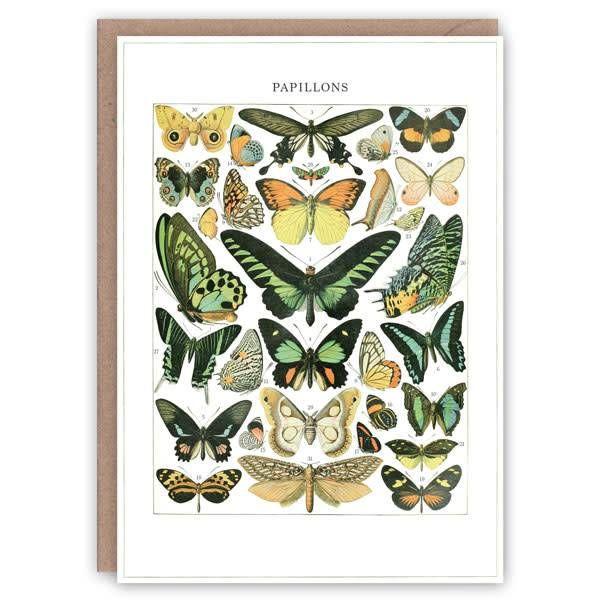 Papillons patrón de tarjeta de libro