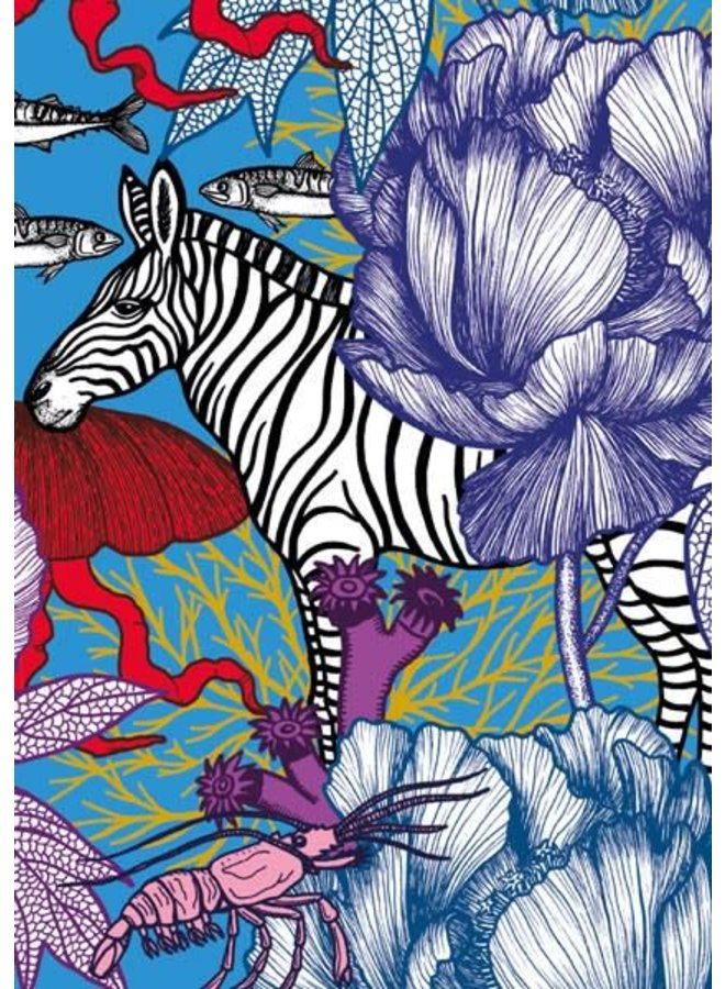 Zebra blank card by Michael Cailloux