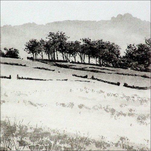 Ian Brooks Westfield Farm Wood - etching  005f unframed