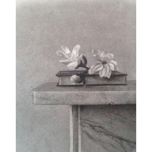 Linda Brill Flor de Magnolia - carbón enmarcado 029