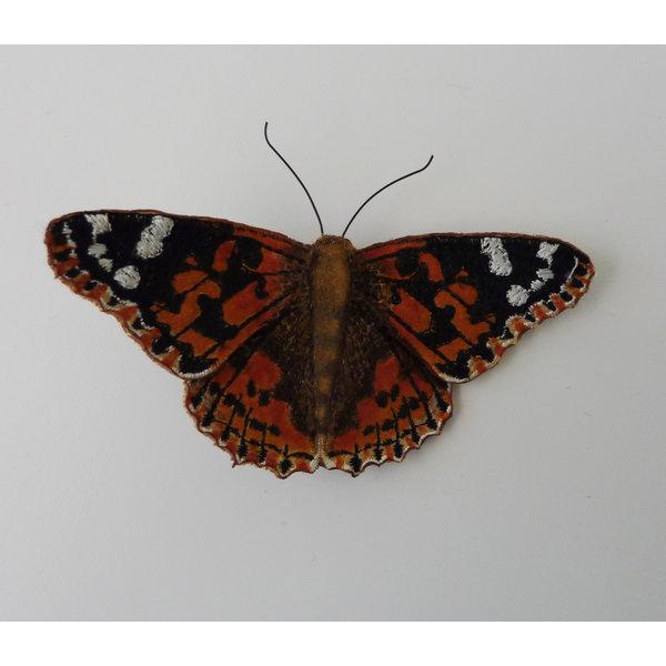 Pintado Lady British mariposa bordado caja broche 007
