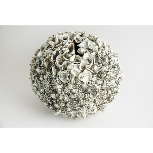 Anne Haworth From the Seabed stoneware 06