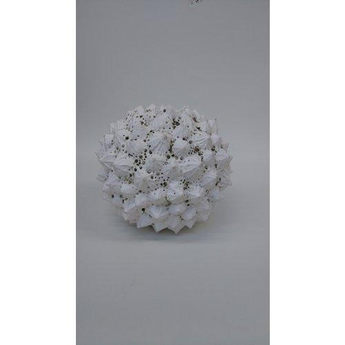 Anne Haworth Pflanzenform Steinzeug 03