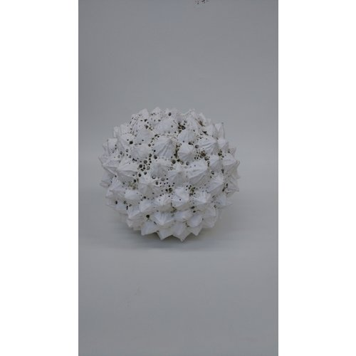 Anne Haworth Plant Form stoneware 03