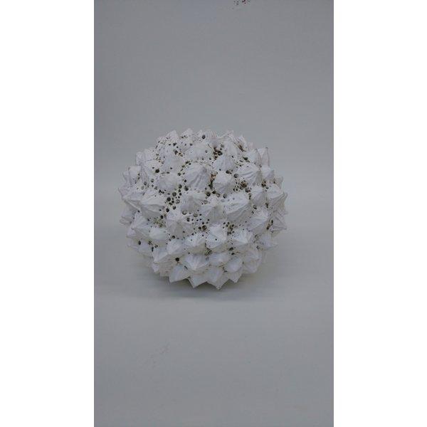 Gres Forma Planta 03