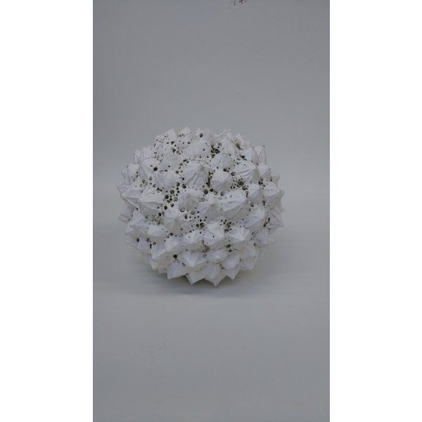 Pflanzenform Steinzeug 03