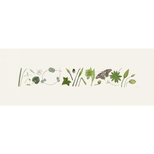 Rachel Pedder-Smith Estampado Green Flora y Bee Line - edición de 200 con soporte 012