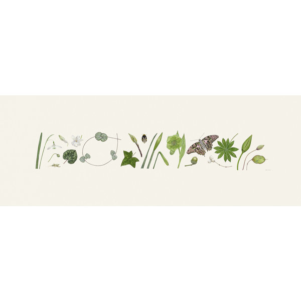 Estampado Green Flora y Bee Line - edición de 200 con soporte 012
