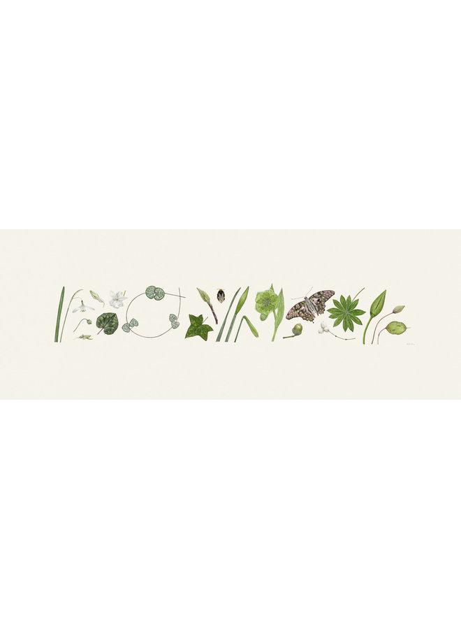 Green Flora and Bee Line Print - Auflage 200 mit Passepartout 012