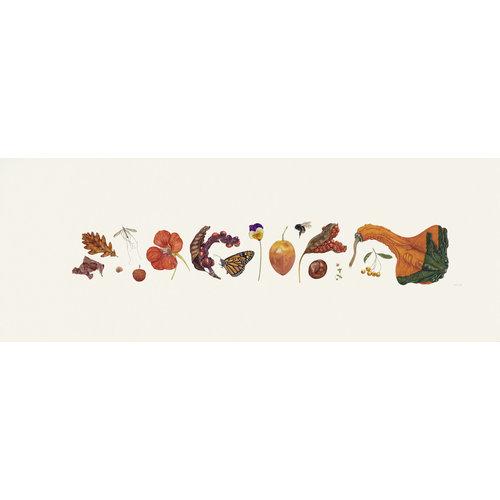 Rachel Pedder-Smith Orange Flora und Bee Line Print - Auflage 200 mit Montierung 013