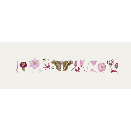 Rachel Pedder-Smith Pink Flora and Bee Line print - edition of 200 with mount  014