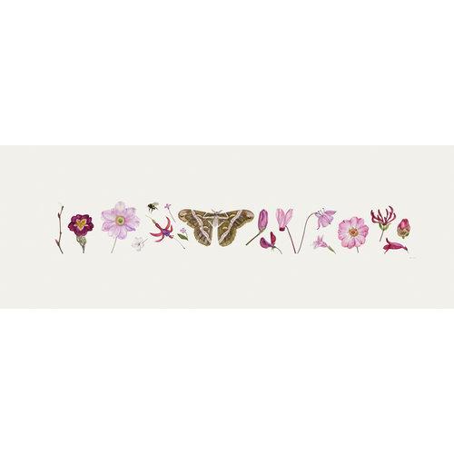 Rachel Pedder-Smith Pink Flora und Bee Line Print - Auflage 200 mit Montierung 014
