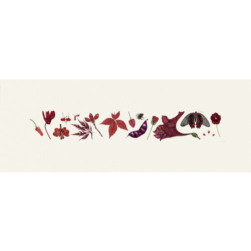 Rachel Pedder-Smith Red Flora and Bee Line print - edition of 200 with mount  015