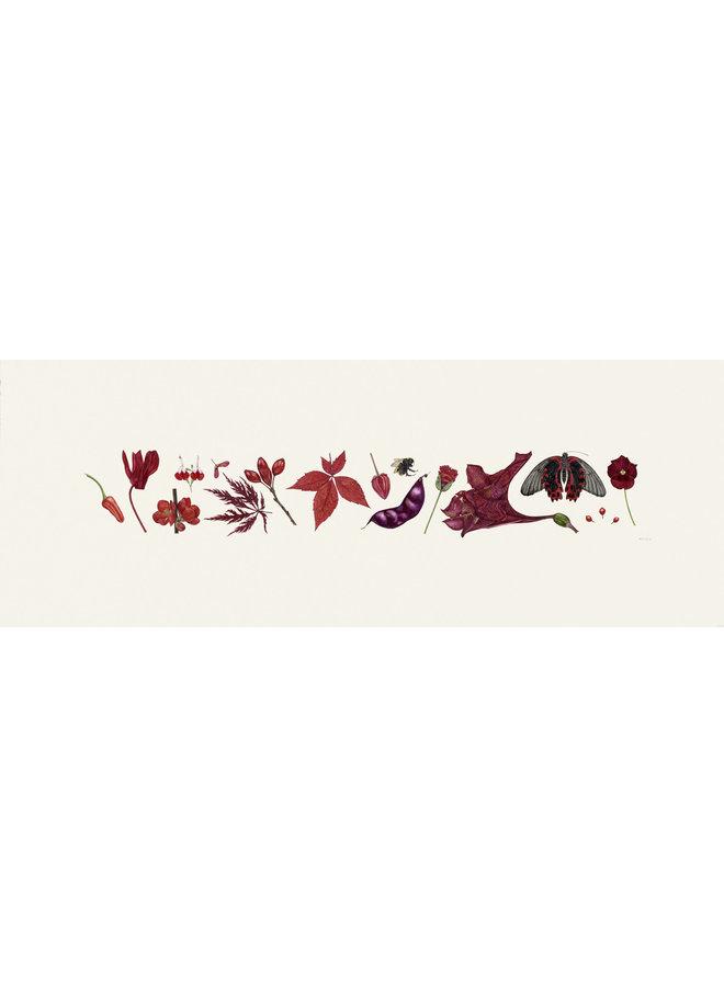 Red Flora and Bee Line Print - Auflage 200 mit Passepartout 015
